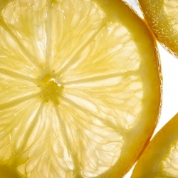 Food-Photography-Lemon